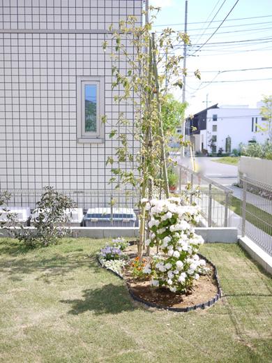 お庭工事2.jpg