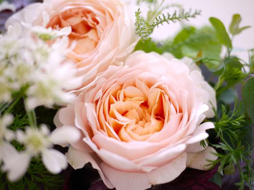 お隣さんのバラ4.jpg