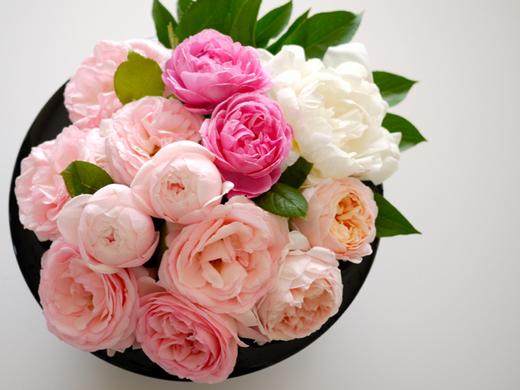 バラと芍薬3.jpg
