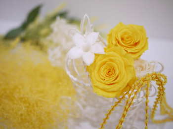 ベビーカー黄色②.jpg