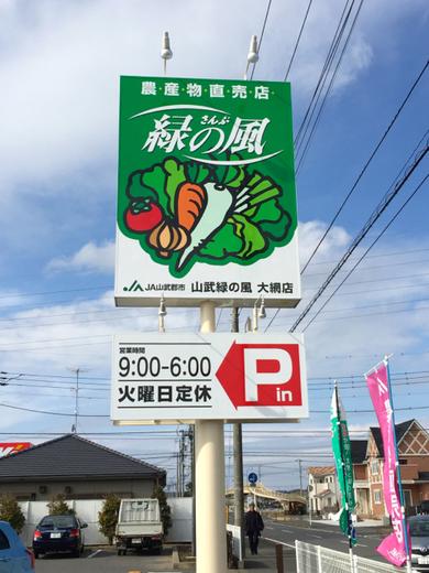 緑の風8.jpg