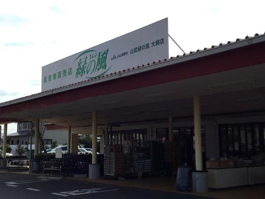 緑の風9.jpg