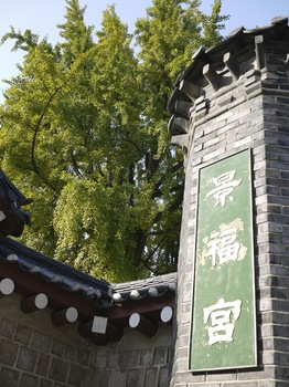 韓国旅行7.jpg